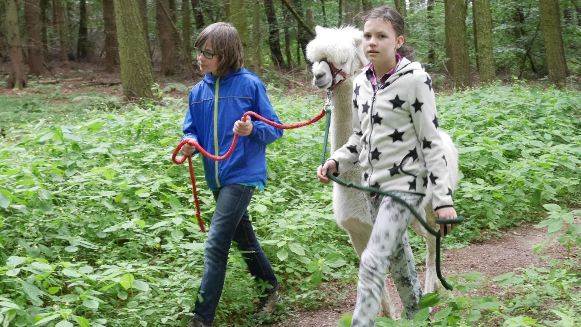 Kinder erleben mit den Alpakas die Natur, © Lena Marie Hahn